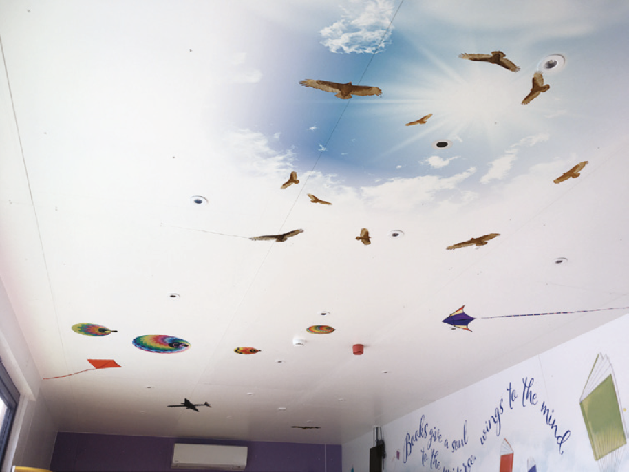 Ceiling Vinyls